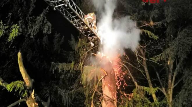 incendio abete secolare cucciago ieri sera pompieri autoscala per spegnere rogo