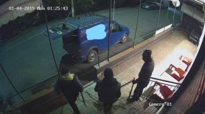 ladri di notte bar di lomazzo ripresi dalle telecamere di sorveglianza