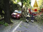 albero caduto su tetto auto via per san fermo pompieri