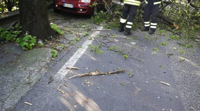como via per san fermo albero caduto su auto in sosta