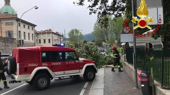 i danni del venti questa mattina a Como: tettoie volate vie ed alberi caduti