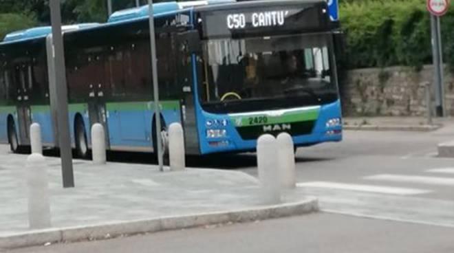 linea c50 bus per cantù albate