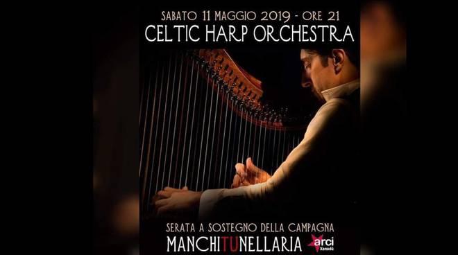 spazio gloria celtic harp