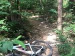 cavi tirati tra gli alberi nel bosco di montorfano rischi per i ciclisti in transito allarme facebook