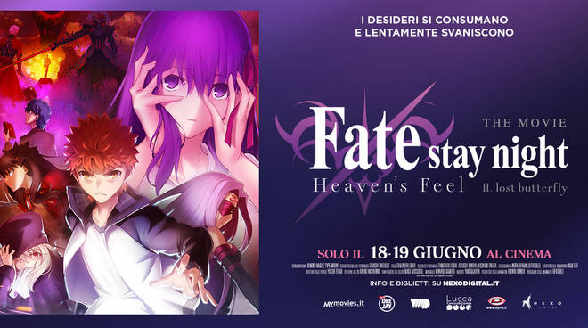 fate/stay the night