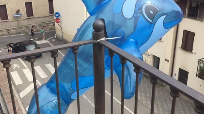 sindaco di olgiate simone moretti e pesci sul balcone comune per rispondere ai vandali