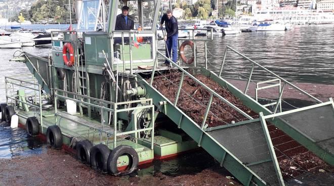 detriti lago di como battello spazzino in azione per rimuoverli