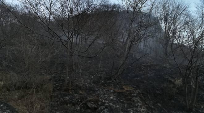 incendio alto lago bosco di val rezzo pompieri elicottero