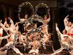 la bella addormentata royal ballet