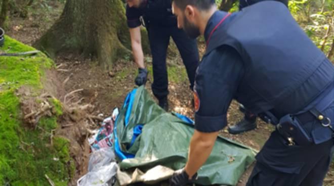 spaccio droga boschi montano lucino operazione dei carabinieri lurate caccivio