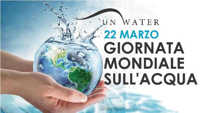 Risultato immagini per giornata mondiale acqua 2020