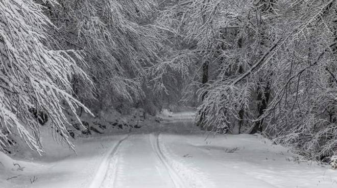 nevicata 2 marzo san fedele intelvi ed anche a bellagio, varie immagini con neve