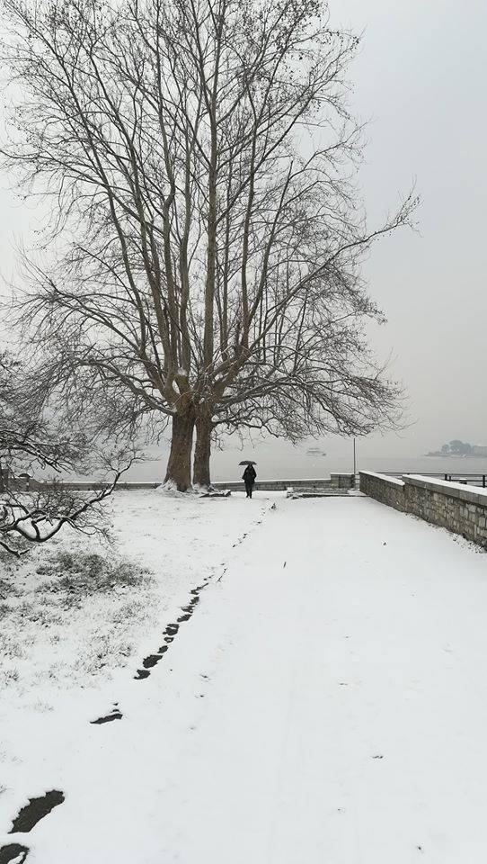 nevicata a como 2018 a villa olmo tutto bianco da meteorologia comasca