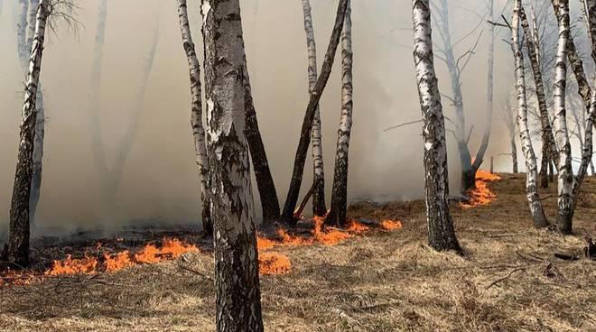 incendio monti di livo alto lago di como giorno di pasqua pompieri
