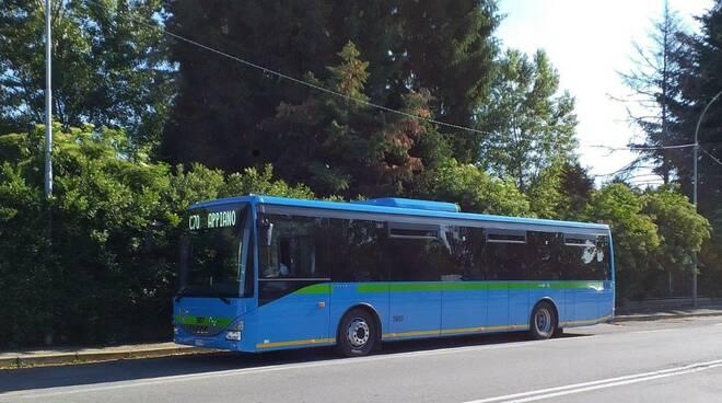 asf autolinee nuovi bus