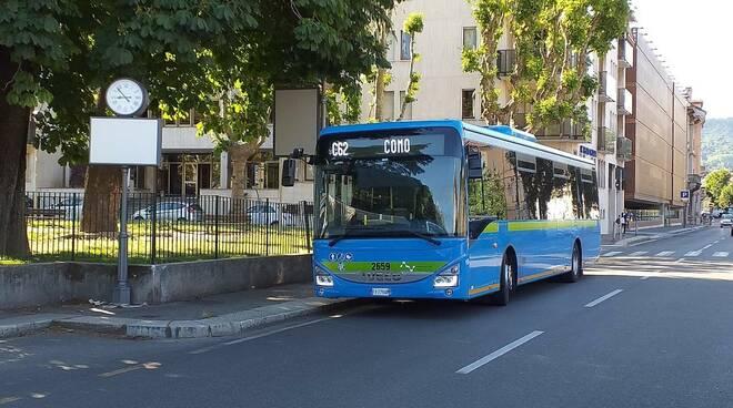 asf autolinee nuovi bus linee urbane