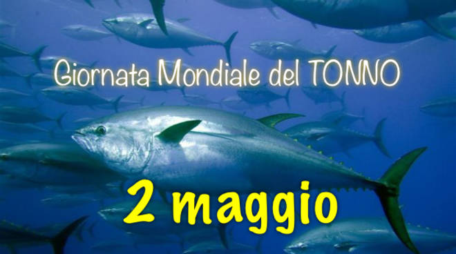 giornata del tonno
