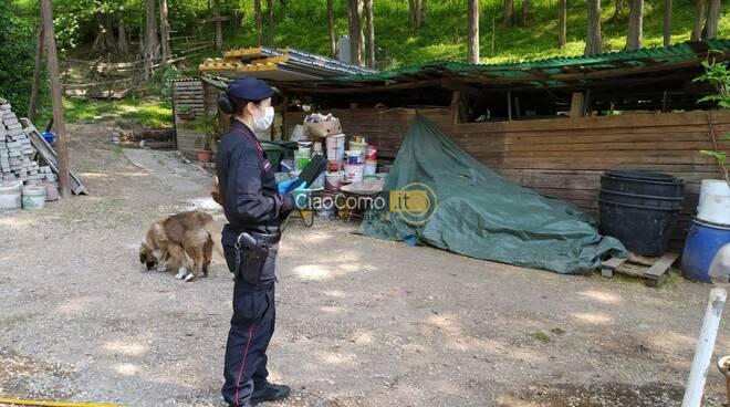 operazione carabinieri monguzzo agriturismo illegale