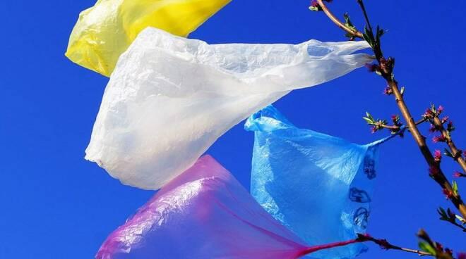 giornata senza plastica
