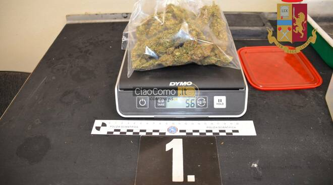 polizia sequestra serra con la droga a casa di un uomo di como