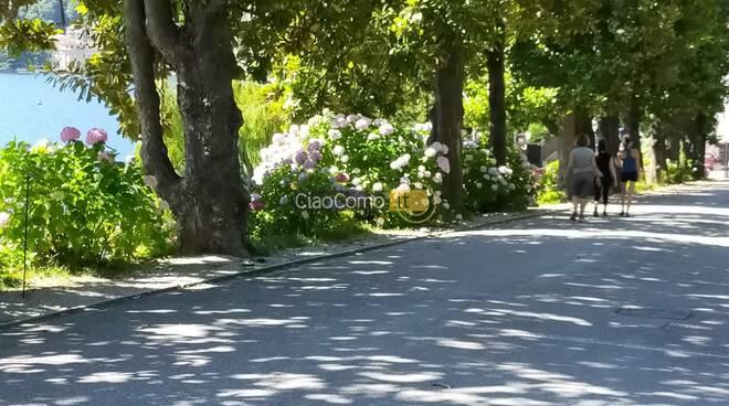 riapertura di villa del grumello como dopo emergenza sanitaria