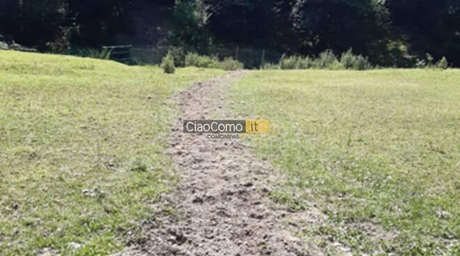 Carabinieri forestale scoprono scarico abusivo parco spina verde
