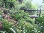 cernobbio giardini