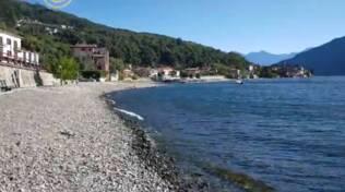 spiaggia di san siro centro lago aggressione cagnolina di turisti