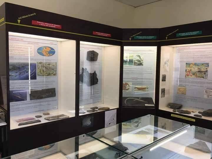 Museo Intelvese dei Fossili  - Alta Valle Intelvi
