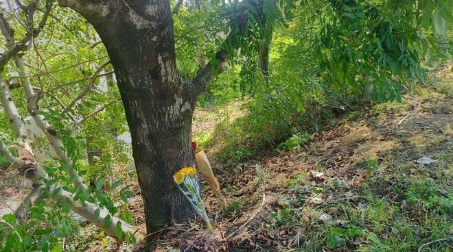 incidente casnate auto fuori strada contro albero luogo schianto e fiori amici