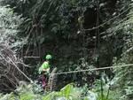 ricerche notturne soccorso alpino per persona dispersa boschi sopra lezzeno