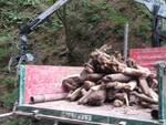 Maltempo a Dizzasco, 200 tonnellate di detriti a ridosso del paese