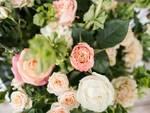 fiori negozio fiorista generico