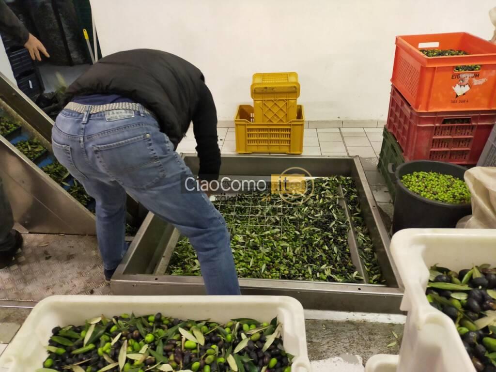 frantoio vanini a lenno per spremituyra olive di questa stagione macchin e olive