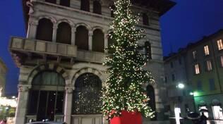 albero di natalke 2020 piazza grimoldi a como accensione