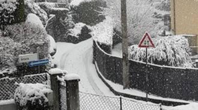 monte olimpino alb eri pericolosi per neve via cardina