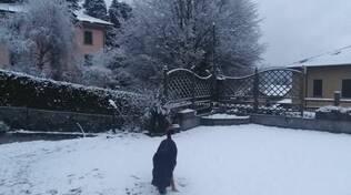 neve di oggi brunate, colma sormao e valle intelvi
