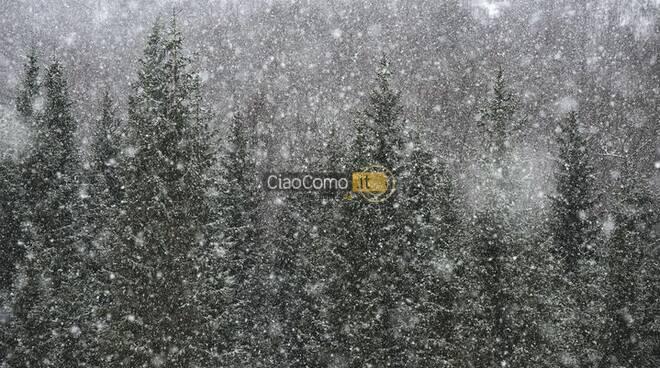 neve oggi foto lettori pian del tivano questa mattina
