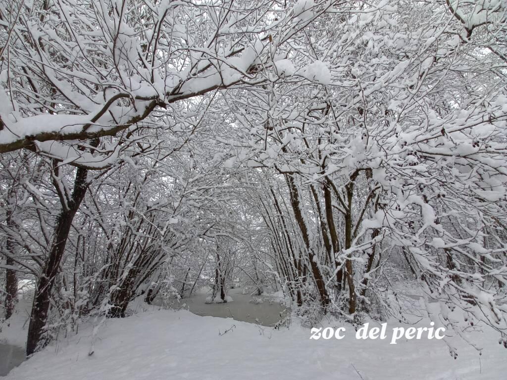 zoc del peric neve