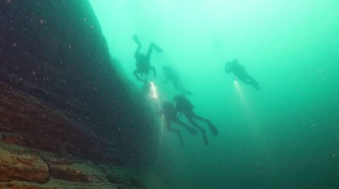 5 cose immersioni