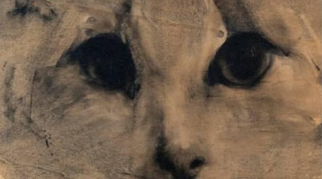 mostra felini di samuele arcangioli