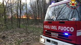 incendio di lurate caccivio boscaglia pompieri