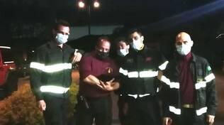 centro valle intelvi, i pompieri recuperano gattino nel vano motore dell'auto e lo adottano