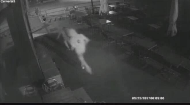 faloppio ragazzini danneggiato bar e gelateria esterno immagini telecamere di sorveglianza