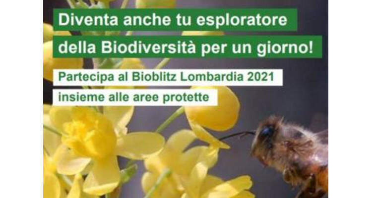 bioblitz lombardia 2021