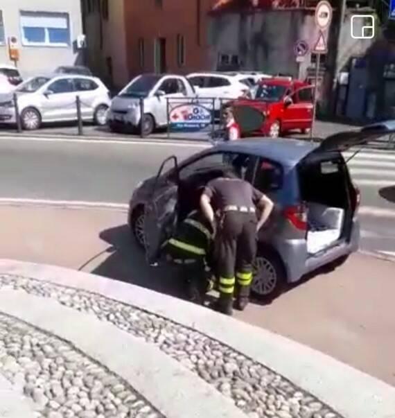 biscia catturata dai pompieri su auto a cantù immagini cattura e vipera