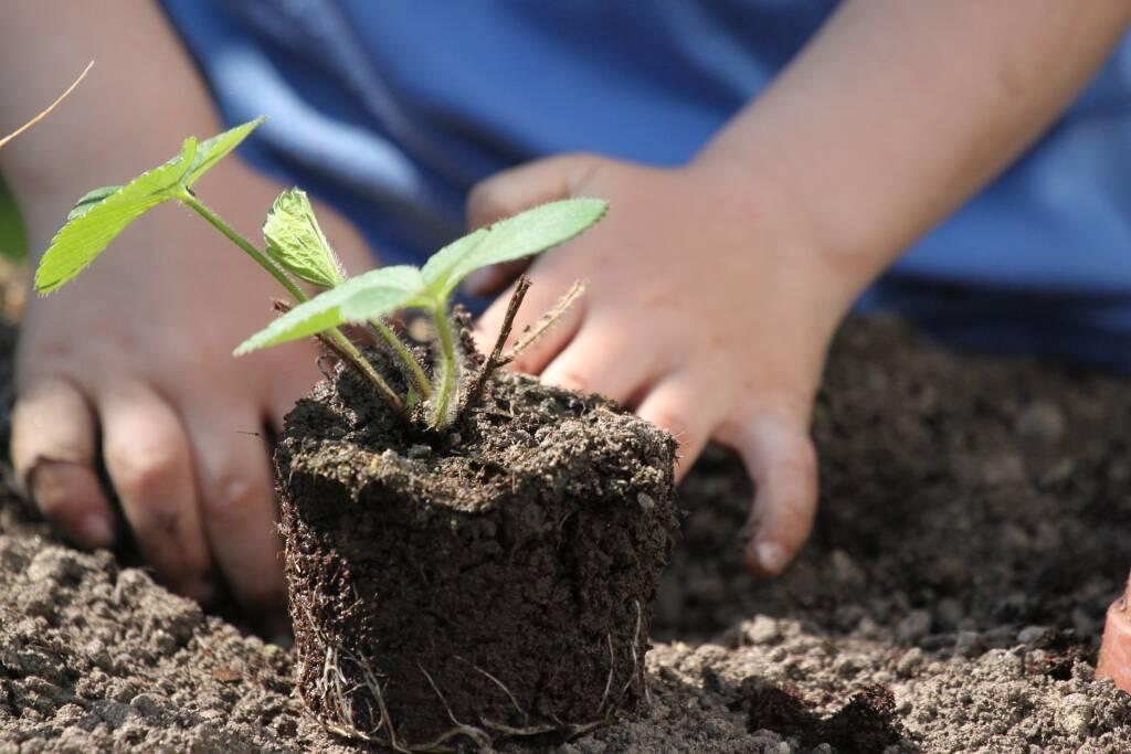 Coldiretti progetti didattici scuola fattoria