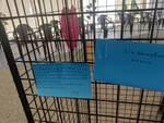 hub vaccinale lurate caccivio affetto della gente bigliettini e regali per medici