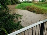 esondazione fiume seveso a montano lucino strade e case allagate
