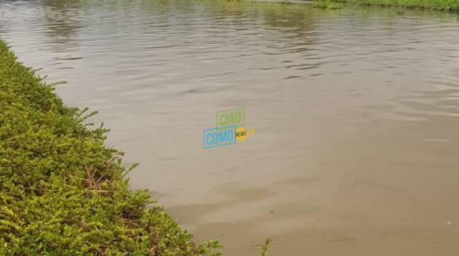 esondazione fiume seveso montano lucino zona bennet e via dell'industria acqua e detriti